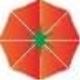 番茄U盘保护软件