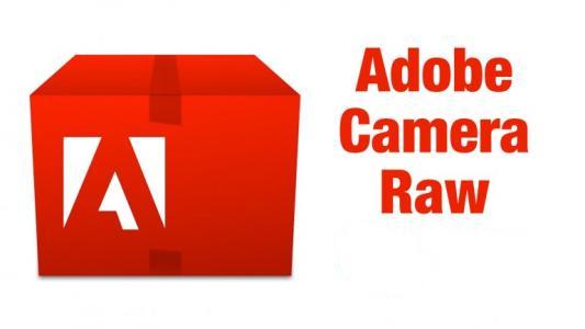 adobe camera raw截图