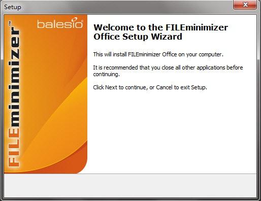 FILEminimizer Office截图