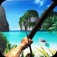 幸存者岛屿破解版