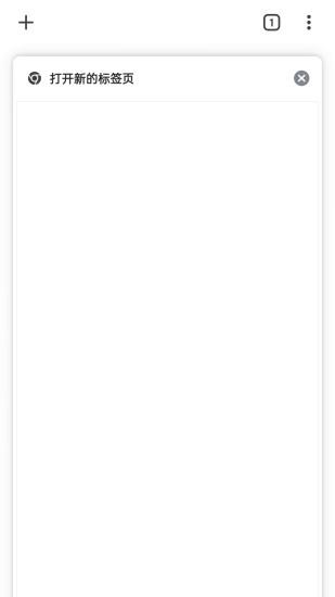 谷歌浏览器安卓版截图