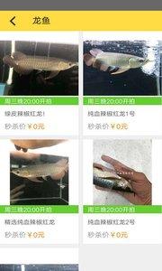 拍鱼网截图