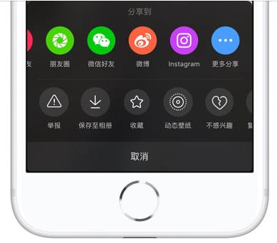 iPhone中下載無水印抖音視頻方法