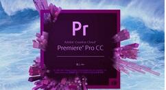 Premiere为视频替换素材的操作步骤