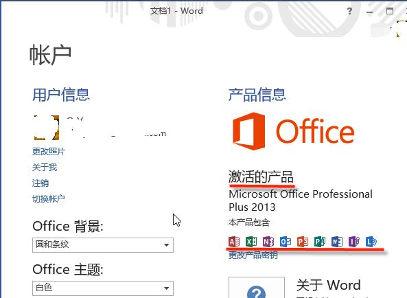 Microsoft Office 2013 (64位)