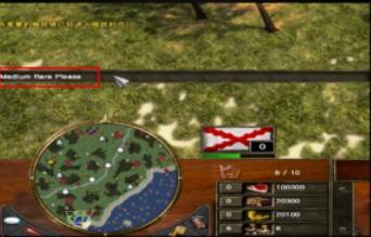 帝国时代3中秘籍食物使用攻略密室逃脱10攻略11关卡视频图片