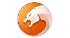 猎豹浏览器中开启禁止跟踪功能的操作方法