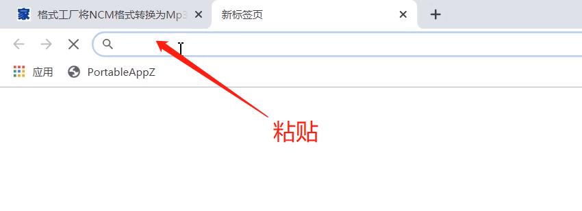 谷歌浏览器下载网页视频的操作方法截图