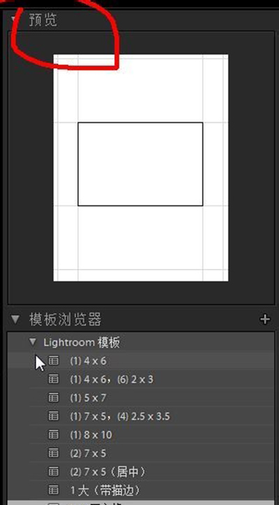 Lightroom制作漂亮拼接模卡的详细方法截图