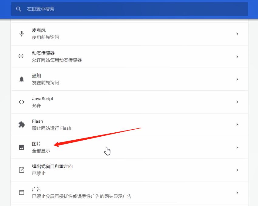 谷歌浏览器图片不显示的解决方法截图
