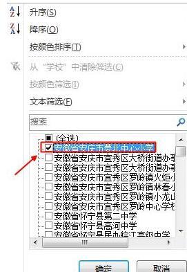 Excel中筛选功能使用教程