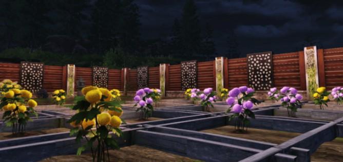 明日之后菊花种子怎么种?明日之后天气与科技种植菊花种子攻略