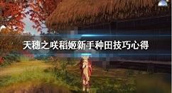 天穗之咲稻姬种田技巧详解 天穗之咲稻姬如何种田