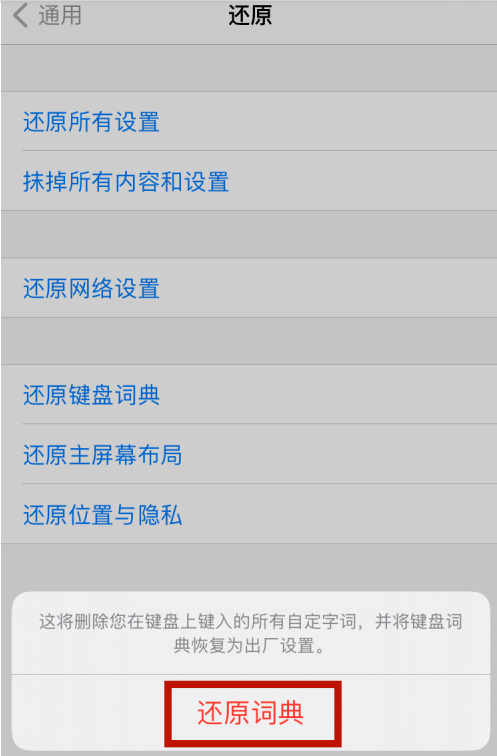 蘋果12怎么刪除輸入法記憶 蘋果12還原鍵盤詞典方法截圖