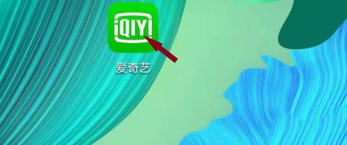 爱奇艺在哪找服务协议 爱奇艺服务协议查询流程截图