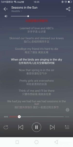 网易云音乐英文歌怎么显示中文?网易云音乐中英歌词翻译方法截图